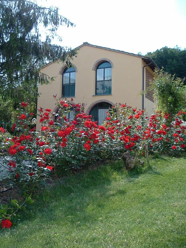 Estate in Toscana