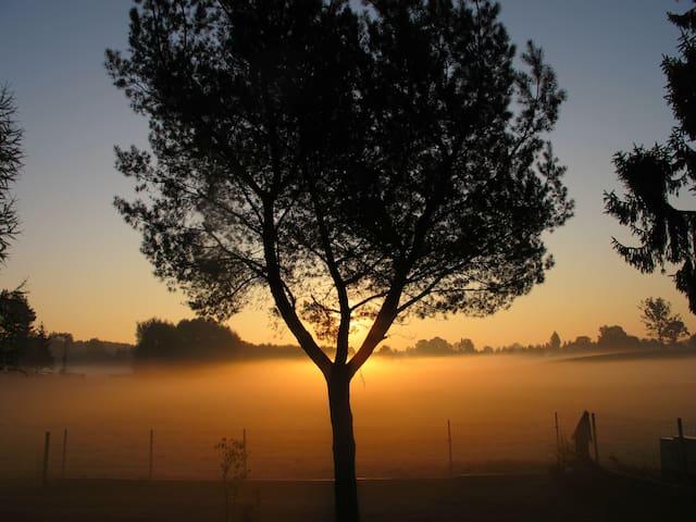 poranek w październiku (sunrise in October)