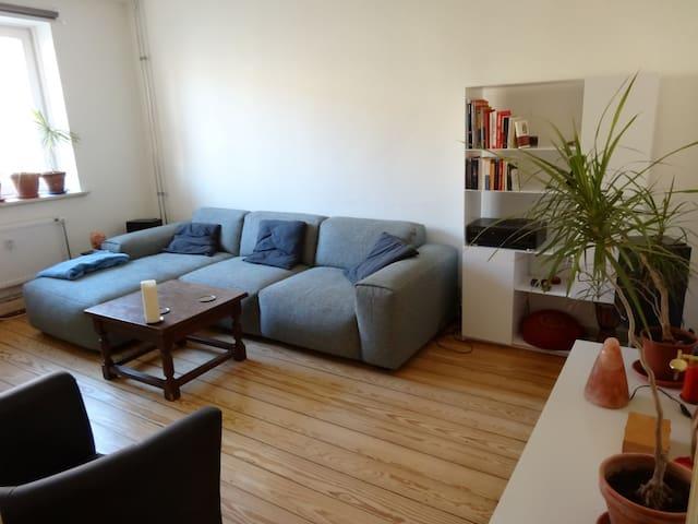 2-Zimmer Wohnung (Elbinsel und zentral)