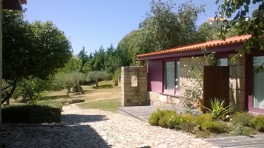 Madural Studio, Douro Valley