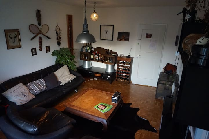 Cosy apartment close to Basel's main station - Münchenstein