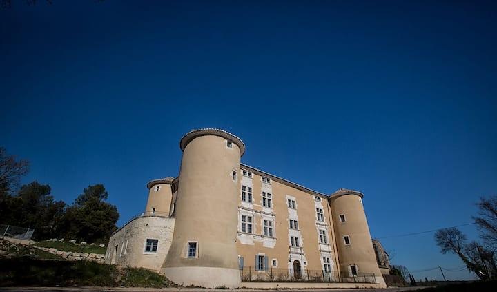 Appartement 5 pers dans aile de Château à Lussan