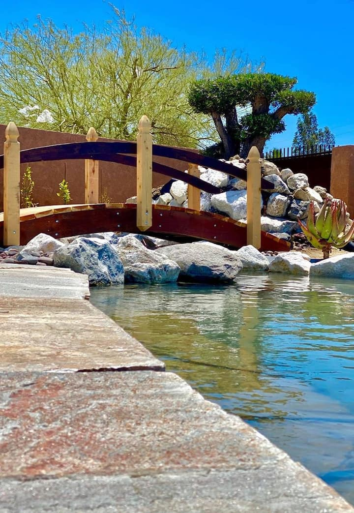 Mineral Water Pool and Jacuzzi | Men's Club Resort