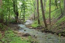 a creek through the retreat property