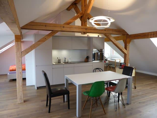Open Space Dachwohnung, Wohnküche