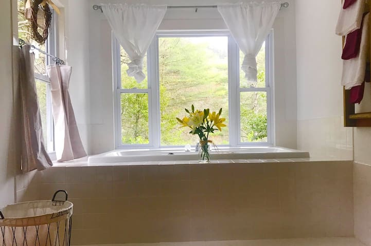 Master suite garden tub with view