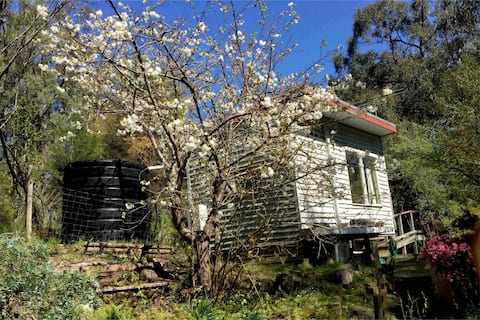 Redwood Tiny Home, Warburton/ Yarra Valley Retreat