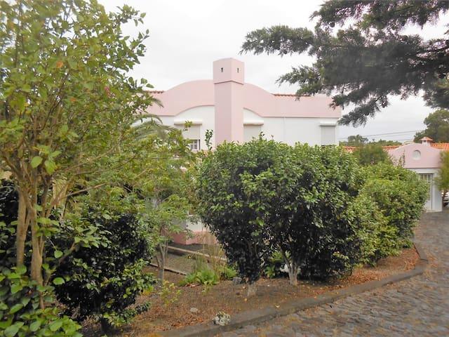 Pink House - Pico Island Azores - Madalena - Haus