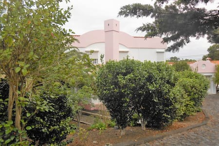 Pink House - Pico Island Azores - Madalena - Haus