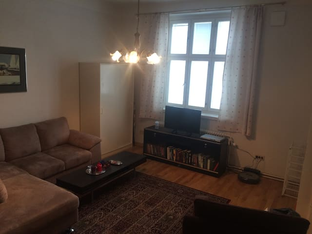 Nice and quiet apartment in Etu-Töölö - Helsinki - Apartament