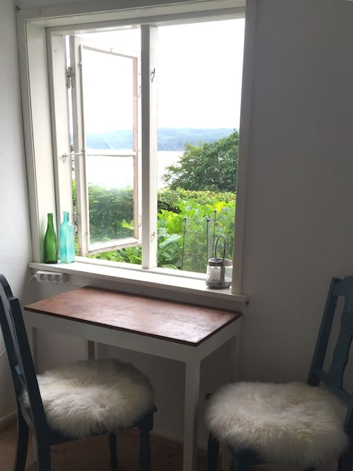 View from the writing desk