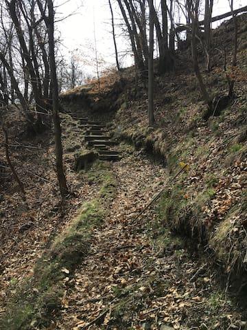 10. Treppenaufstieg oben leicht rechts weiter....