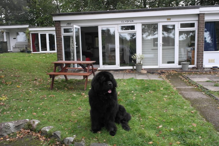 Clydfan Chalet 'Pet friendly' Walkers retreat