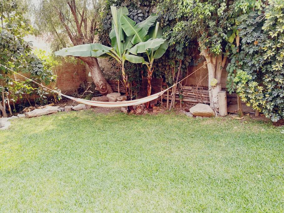 Lugar para descansar en medio de la vegetación y cerca a la ciudad