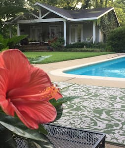 Beautiful Garden Guest House - Schlater - Bed & Breakfast