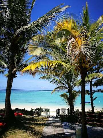 A view of the magnificent turquoise water from the residence garden
