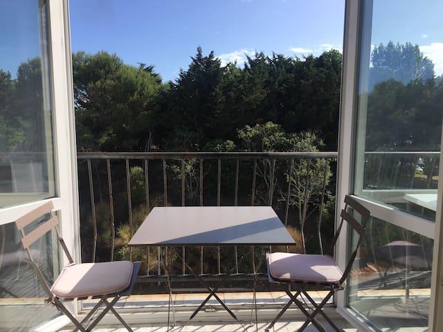 Le balcon, ouvert ou fermé. Vue sur les pins. Très calme.