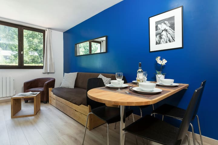 Jonquille Terrasse - lovely one bedroom apartment with south facing Mont Blanc  terrace