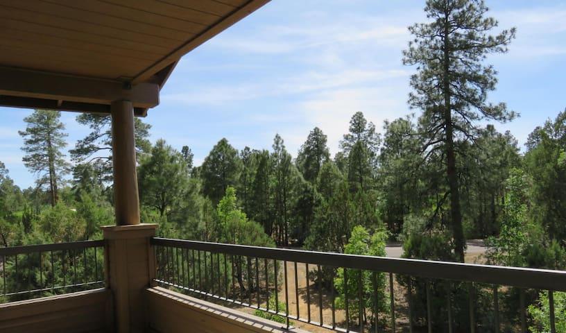Torreon Luxury Mountain Escape in Show Low, AZ