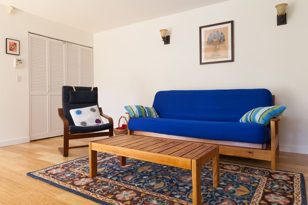 Futon couch folds out into comfortable full-sized bed.