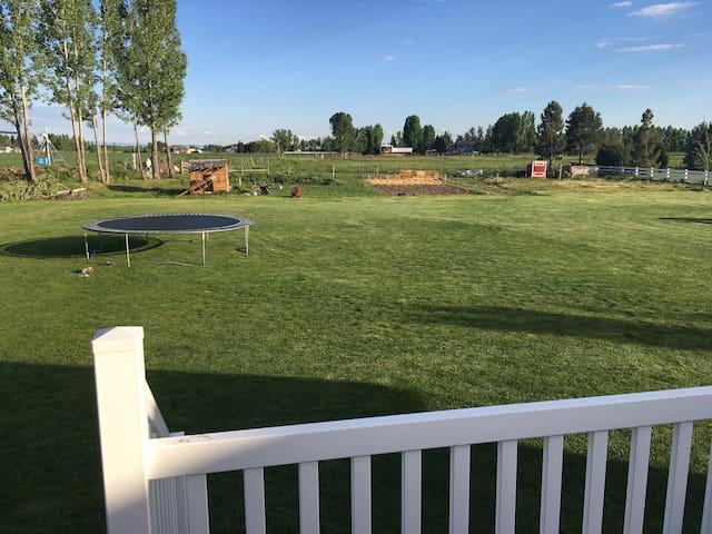 A nice open backyard