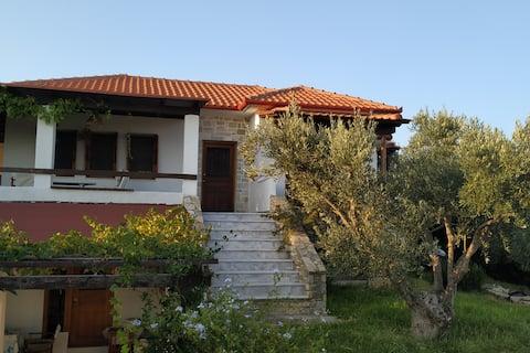 Olive Grove Summer Villa