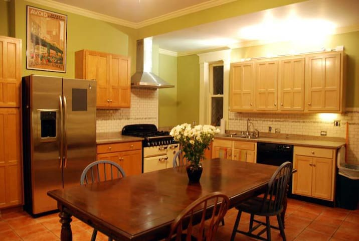Beautiful historic home, close to downtown. - Oak Park - Huis