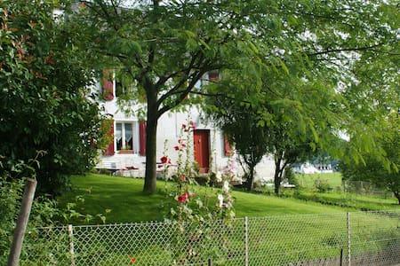 la maison aux hortensias - Lanne-en-Barétous
