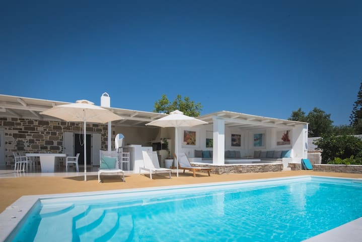VILLA ARIAKAS with pool and barbecue on the sea