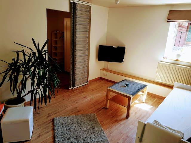 Blick ins Wohnzimmer mit Durchgang zum Schlafzimmer