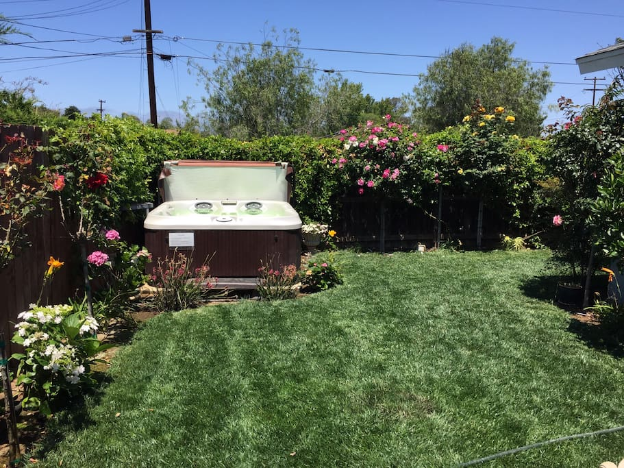 Lush Green backyard and flowers everywhere! Patio tree rose bushes Lilys hydrangeas, orange, lemon, lime, avocado & peach trees, berry & passionfruit vines. Outdoor Bluetooth BOSE Speakers - enjoy music from your phone while you relax in the jacuzzi or have a BBQ.