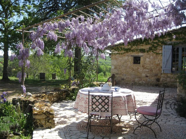 The wisteria-covered terrace, over-looking the garden.
