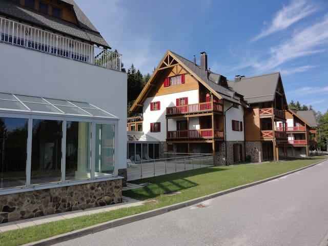 Pohorje Apartment Bolfenk - Hočko Pohorje - Apartment