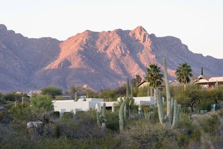 View of the Tucson Mountains