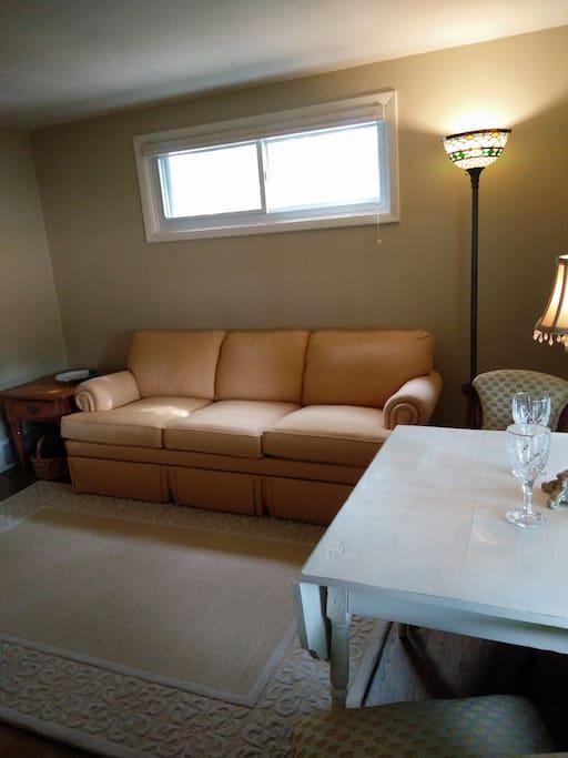 Comfy living room area