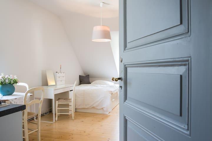 Altbau-Mansarden-Zimmer: charmant und stadtnah - Freiburg im Breisgau - Appartement