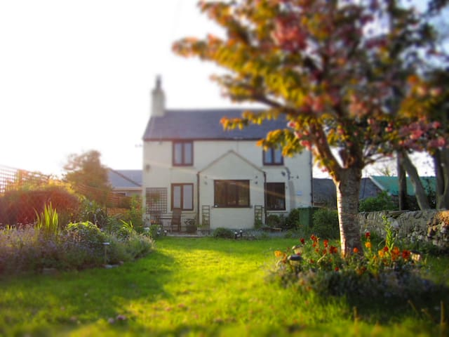 Tyn Llain - Cosy Anglesey Cottage - Malltraeth - House