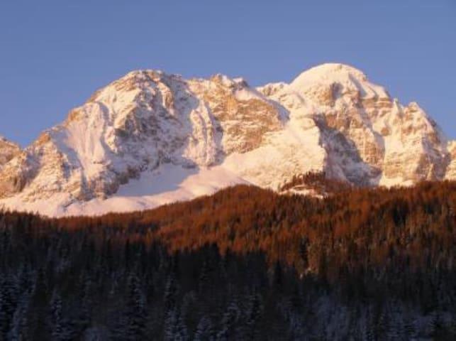 Relax nel cuore delle Dolomiti - Pianaz - Wohnung
