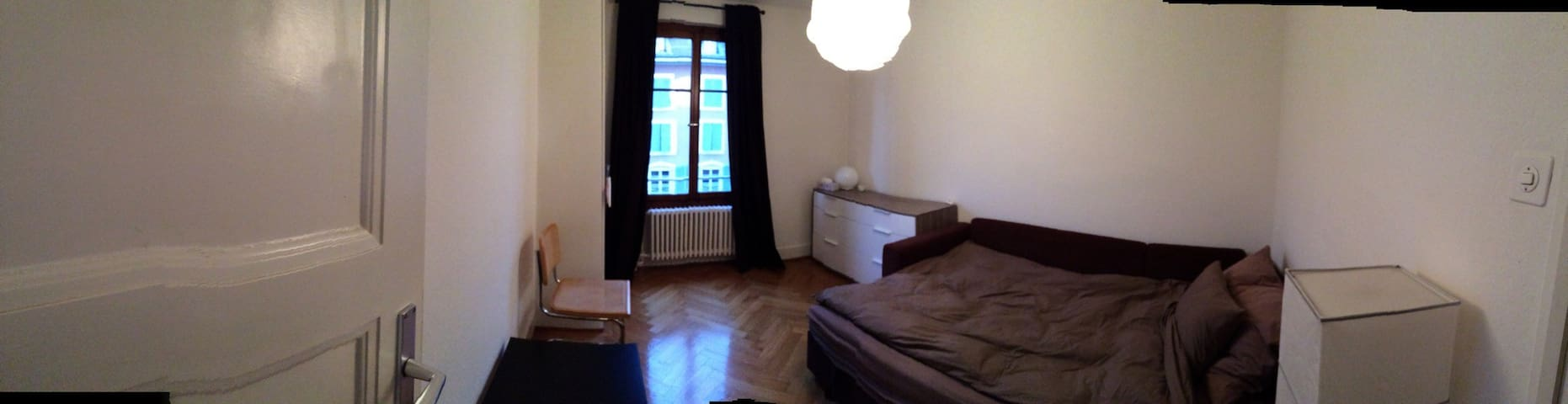 Cosy appartment - city center - Carouge - Lejlighed