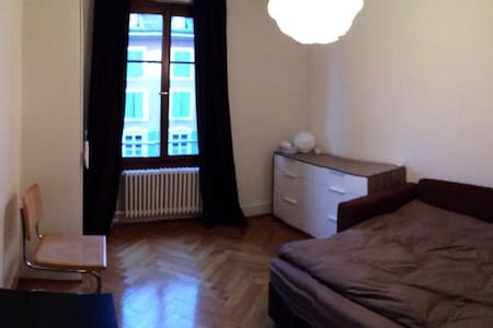 Cosy appartment - city center - Carouge