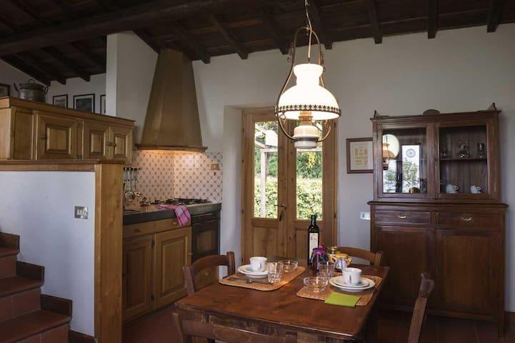 Holiday in antique farm, Basilocco - Roccatederighi - Lägenhet