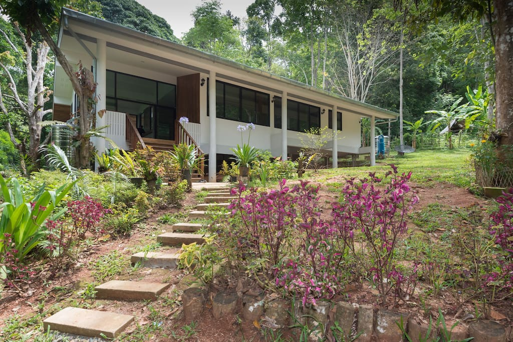 Cool mountain breezes, in a tropical rain forest...welcome to our cottage