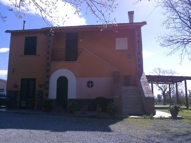 Casale di campagna - Capalbio - House