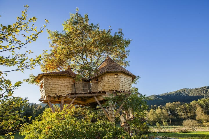 Grand cabane dans l'arbres