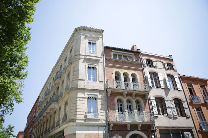 Flat in Toulouse center - Tolosa - Pis