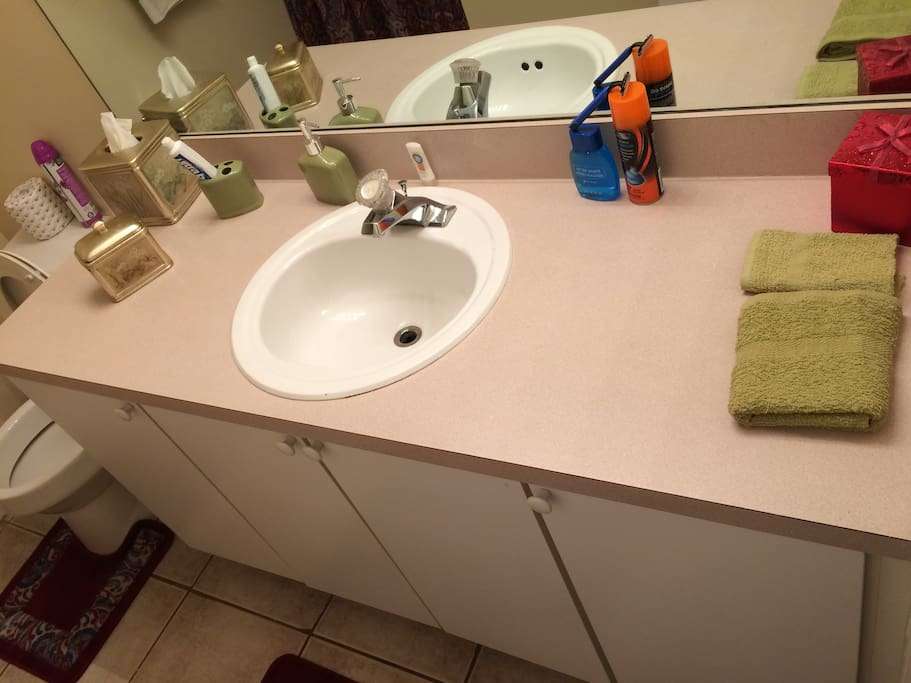 Private on suite full bath