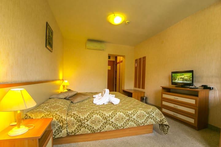 Double Room in Devin SPA Hotel 4* - Devin - Bed & Breakfast