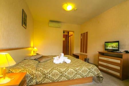 Double Room in Devin SPA Hotel 4* - Devin