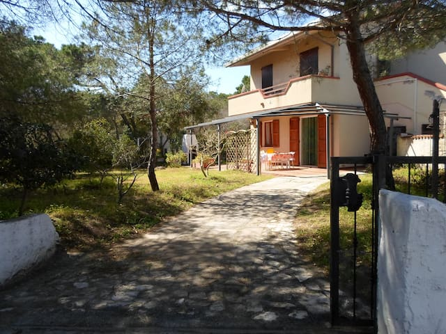 Casa vacanze a Platamona (SS) - Platamona (SS) - House