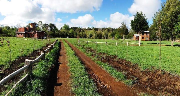 Weuuuupule - Alojamiento Rural